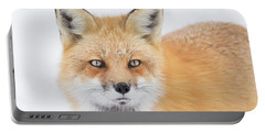 Portable Battery Charger featuring the photograph Winter Portrait by Mircea Costina Photography