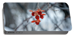 Winter Seeds Portable Battery Charger