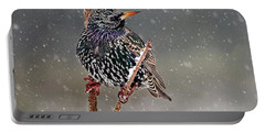 Winter Starling 2 Portable Battery Charger