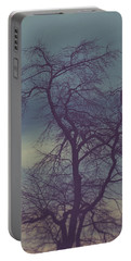 Portable Battery Charger featuring the photograph Winter Tree by Shane Holsclaw