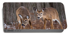 Winter White Tail Deer Portable Battery Charger