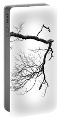 Portable Battery Charger featuring the photograph Wintered Over by Skip Willits