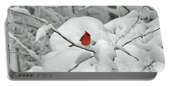 Winter's Way Portable Battery Charger