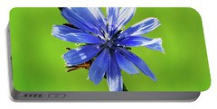 Wisconsin Blue Chicory Flower Portable Battery Charger