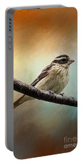 Wisconsin Songbird Portable Battery Charger