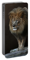 Portable Battery Charger featuring the photograph With Age Comes Wisdom by Debi Dalio