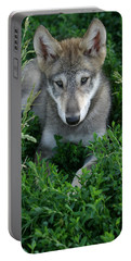 Portable Battery Charger featuring the photograph Wolf Pup Portrait by Shari Jardina