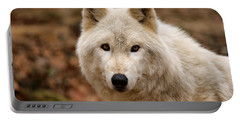 Wolf Watching Portable Battery Charger