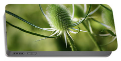 Wonderful Teasel - Portable Battery Charger