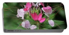 Wonders Of Cleome Portable Battery Charger by Deborah  Crew-Johnson