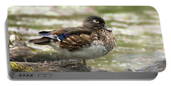Wood Duck Hen Portable Battery Charger