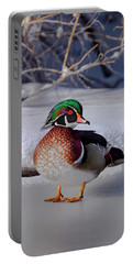 Wood Duck In Winter Snow And Ice, Montana, Usa Portable Battery Charger