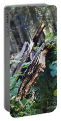 Wood In The Forest Portable Battery Charger by Janie Johnson