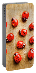Wooden Ladybugs Portable Battery Charger