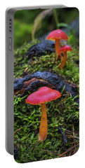 Portable Battery Charger featuring the photograph Woodland Floor Decor by Bill Pevlor