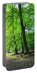 Portable Battery Charger featuring the photograph Woodland Path by Anne Kotan