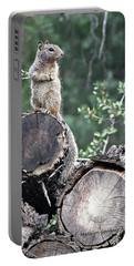 Woodpile Squirrel Portable Battery Charger