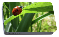 Portable Battery Charger featuring the photograph World Of Ladybug 2 by Jean Bernard Roussilhe