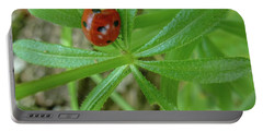 World Of Ladybug 3 Portable Battery Charger