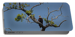 Yawkey Wildlife Reguge - American Bald Eagle Portable Battery Charger by Suzanne Gaff