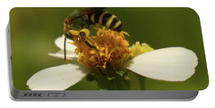 Portable Battery Charger featuring the photograph Yellow And Black Bee On Flower. by Vincent Billotto