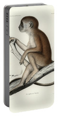 Yellow Baboon, Papio Cynocephalus Portable Battery Charger