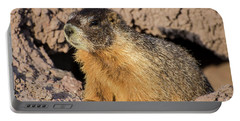 Yellow-bellied Marmot - Capitol Reef National Park Portable Battery Charger