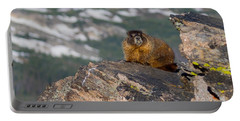 Yellow Bellied Marmot Portable Battery Charger