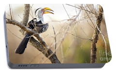 Yellow-billed Hornbill Sitting In A Tree.  Portable Battery Charger by Jane Rix
