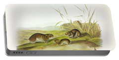 Yellow-cheeked Meadow-mouse Portable Battery Charger
