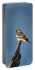 Yellow Crimson Rosella Portable Battery Charger by Douglas Barnard