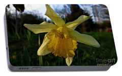 Portable Battery Charger featuring the photograph Yellow Daffodils 5 by Jean Bernard Roussilhe