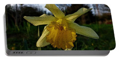 Yellow Daffodils 5 Portable Battery Charger