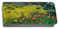 Portable Battery Charger featuring the photograph Yellow Forsythia by Diana Mary Sharpton