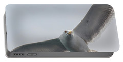Portable Battery Charger featuring the photograph Yellow-legged Gull - Larus Michahellis by Jivko Nakev