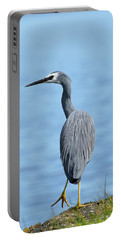 Portable Battery Charger featuring the photograph Yellow Legs 01 by Kevin Chippindall