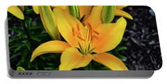 Portable Battery Charger featuring the photograph Yellow Lily 008 by George Bostian