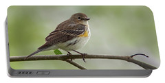 Yellow-rumped Warbler Portable Battery Charger