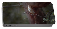Yellow-rumped Warbler At Water Spout Portable Battery Charger