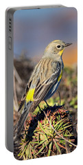 Yellow-rumped Warbler On The Bluff Portable Battery Charger