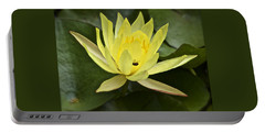 Yellow Waterlily With A Visiting Insect Portable Battery Charger