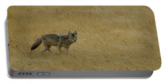 Portable Battery Charger featuring the photograph Yellowstone Coyote by Sue Smith