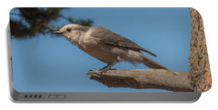 Yellowstone Grey Jay Portable Battery Charger