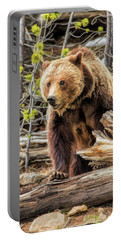 Portable Battery Charger featuring the painting Yellowstone Grizzly Bear by Christopher Arndt