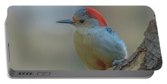 Young Red Bellied Woodpecker Portable Battery Charger