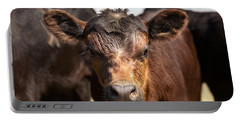 Young Angus Portable Battery Charger