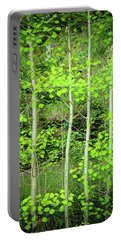 Portable Battery Charger featuring the photograph Young Aspen Forest Portrait by James BO Insogna