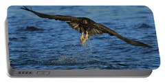 Young Bald Eagle Catching Fish Portable Battery Charger by Coby Cooper