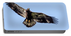 Young Bald Eagle Flight Portable Battery Charger