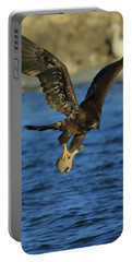 Young Bald Eagle With Fish Portable Battery Charger by Coby Cooper